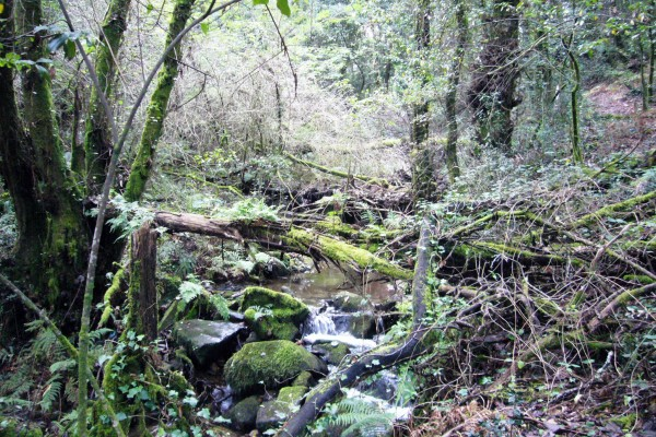 Río do Batán